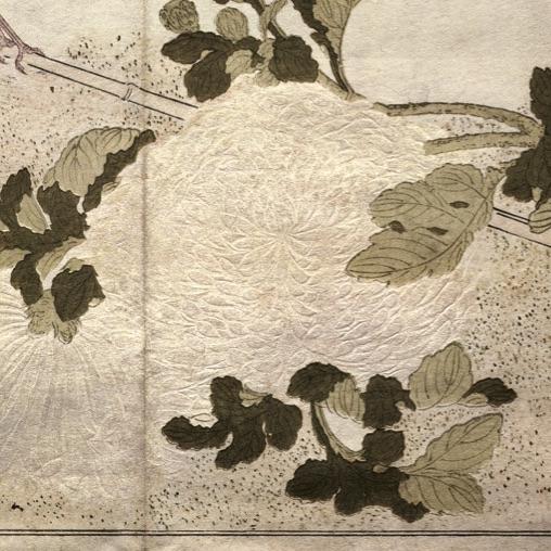 Utamaro_karazuri_blossom_crop
