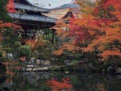 叡山電鉄周辺で京都の庭をめぐる、2泊3日の旅【前半】