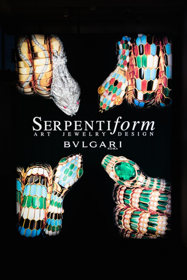 SerpentiForm set up 3