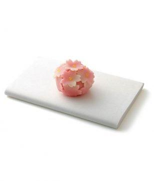 見た目も味も美しい!京都 春の和菓子オススメ7選