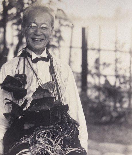 「日本の植物学の父」と呼ばれた植物学者・牧野富太郎ってどんな人?