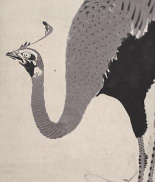 若冲は水墨画も凄かった!「寿老人・孔雀・菊図」で徹底検証してみました。