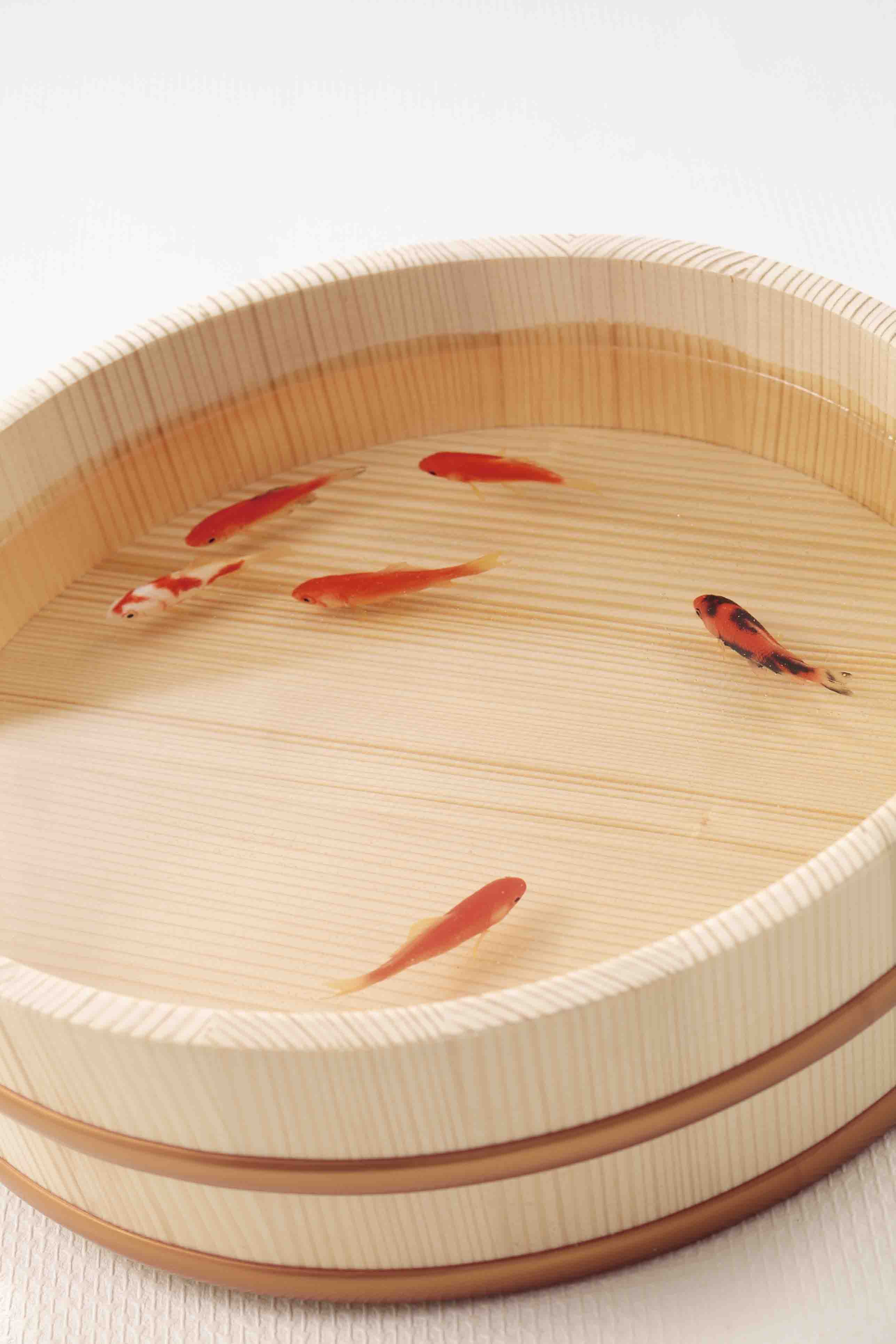 過去作品「金魚の泳ぐ桶」