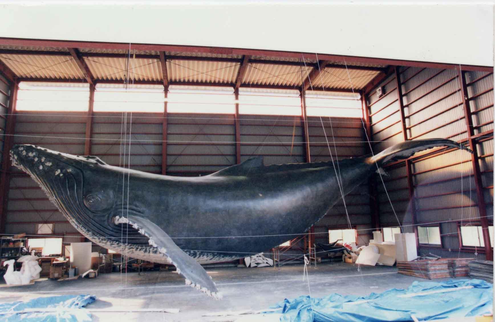 巨大なクジラの模型